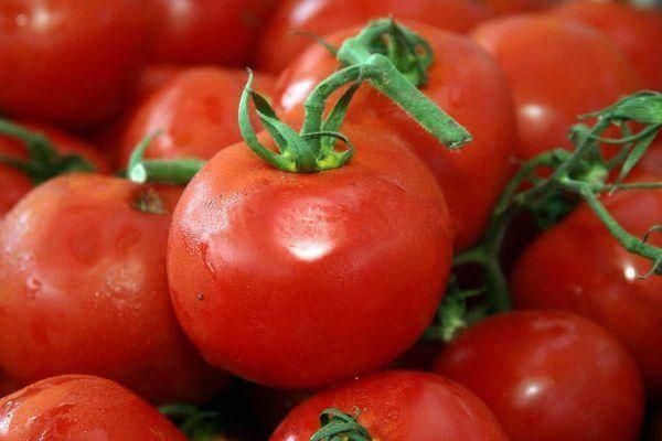 Томаты «пинк клер f1»: популярный сорт среди огородников