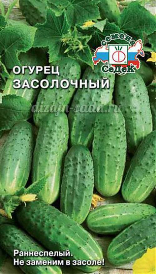 Обзор лучших сортов огурцов для засолки и консервирования с фото и описанием