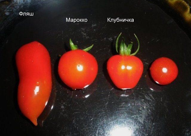 Характеристика и описание сорта томата «фляшен», а также фото и отзывы