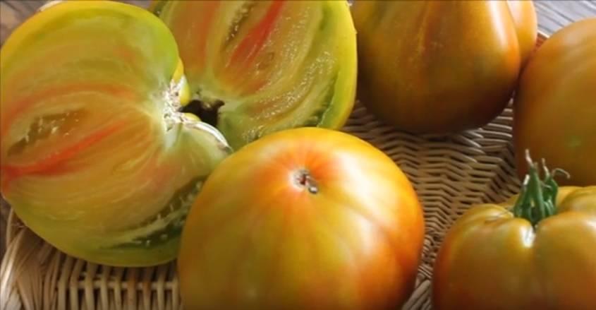 Описание томата сорта янтарное сердце и его характеристики