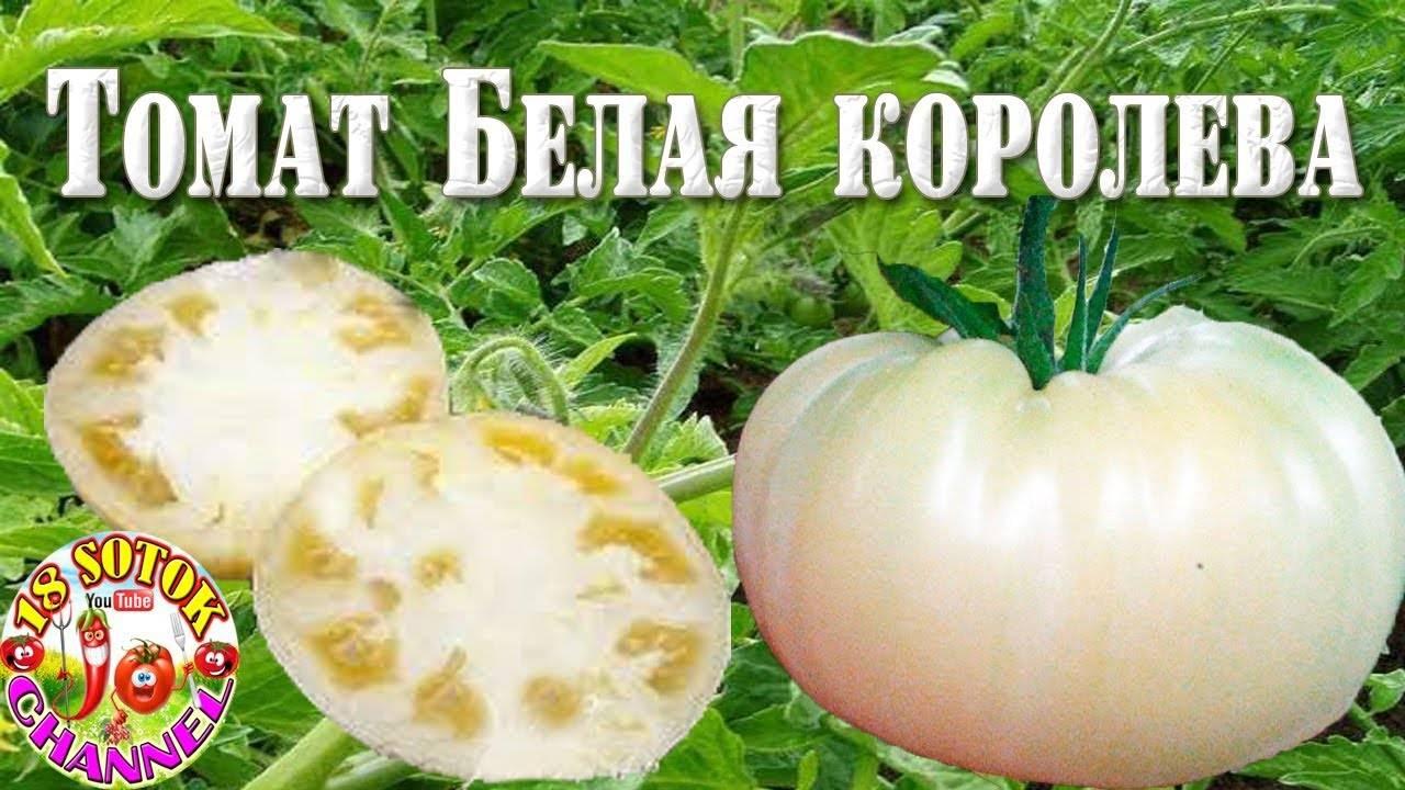 Красивый и вкусный томат «чайная роза»: описание сорта, фото, советы по выращиванию