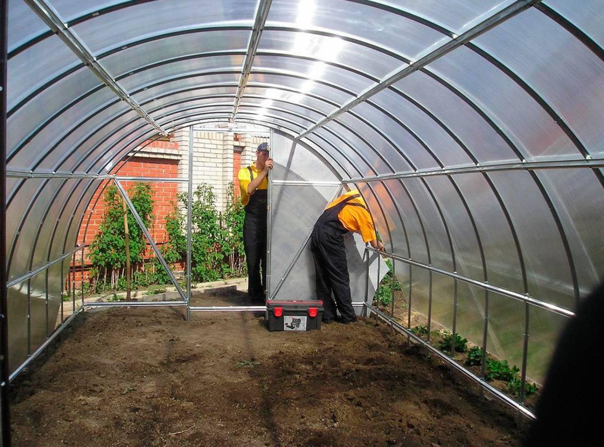 Подготовка почвы теплицы под огурцы
