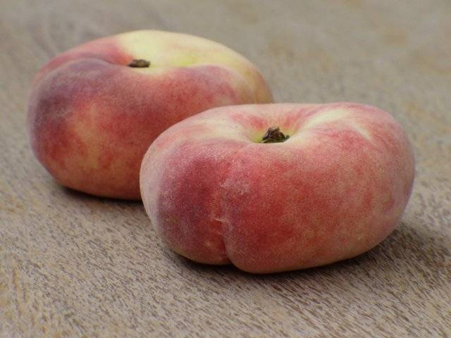 Инжирный персик или китайская репка: посадка и уход