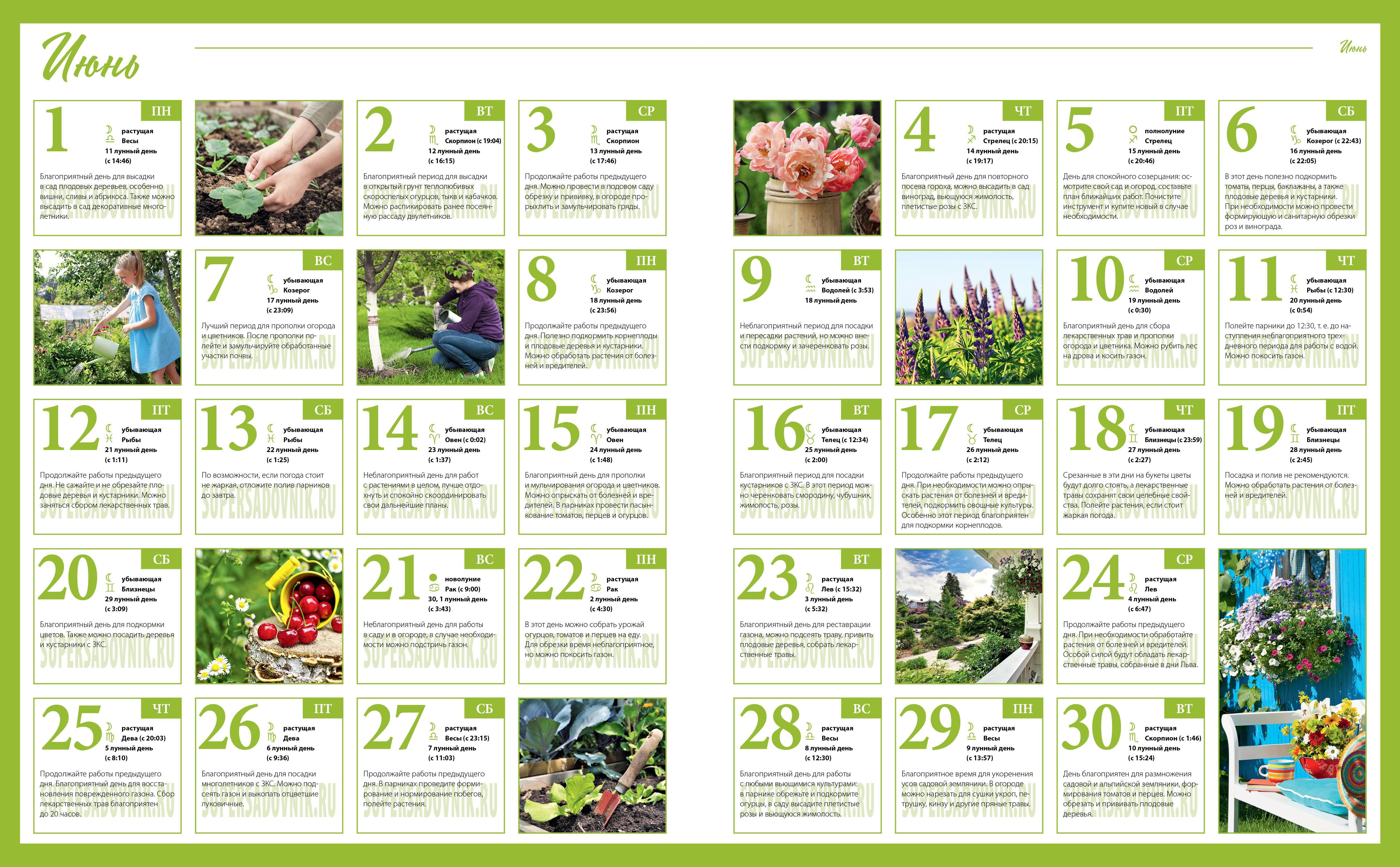 Лунный календарь садовода и огородника май 2020