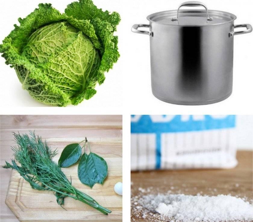 Заготовки на зиму – квашеная капуста – сборник рецептов
