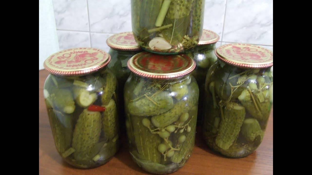 Простой рецепт маринования огурцов в виноградных листьях на зиму