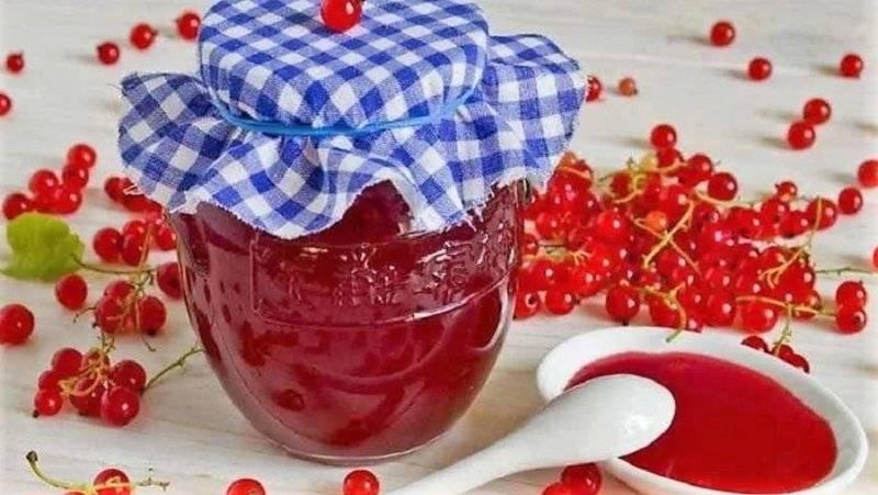 Белая смородина на зиму: рецепты заготовок