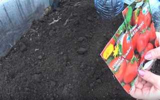 Безрассадный способ выращивания определенных сортов томатов в открытом грунте