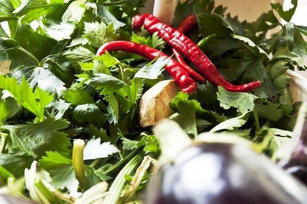 Все о популярном сладком перце рамиро: описание и характеристики, выращивание и другие нюансы