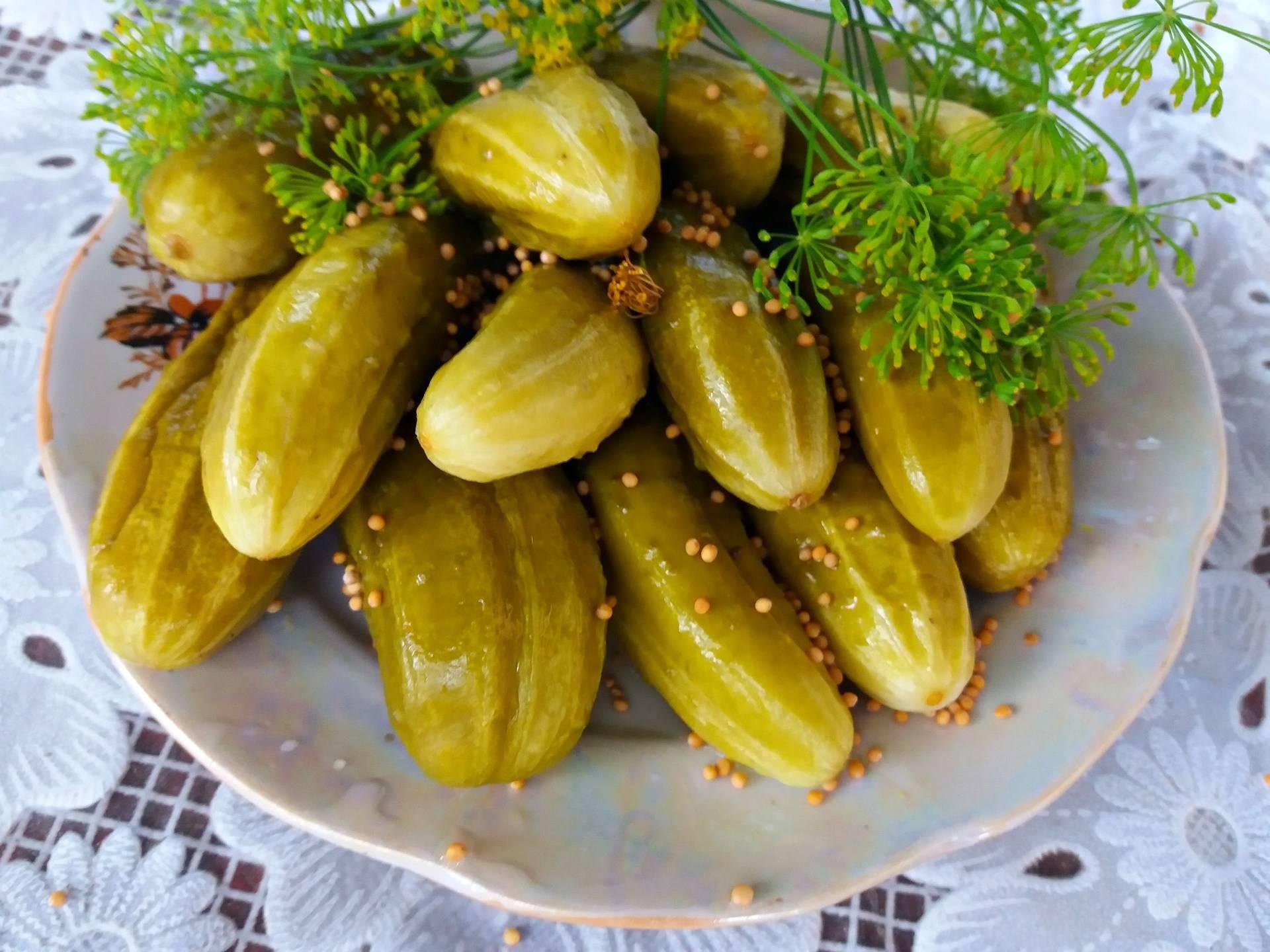 Нежинские огурцы: особенности выращивания знаменитого засолочного сорта