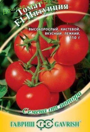 Характеристика сорта томатов интуиция, урожайность, отзывы