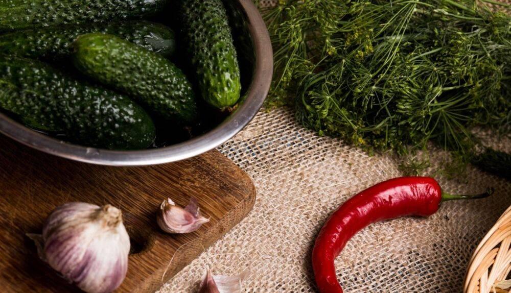 Малосольные огурцы в пакете — 8 рецептов с чесноком и укропом хрустящих огурцов быстрого приготовления