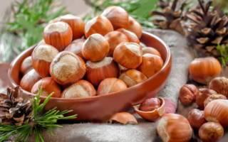 Лещина: описание, выращивание и полезные свойства