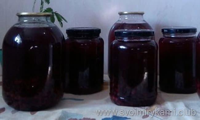 Как приготовить компот из белой смородины: простые и вкусные рецепты