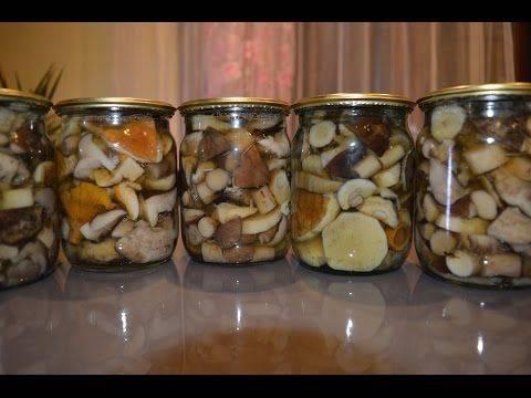 Заготовка белых грибов на зиму по самым простым рецептам
