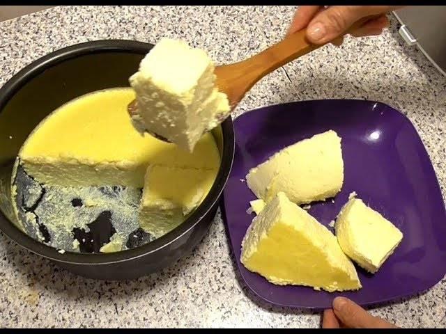 Просто, вкусно и полезно: 4 рецепта сыра из козьего молока в домашних условиях