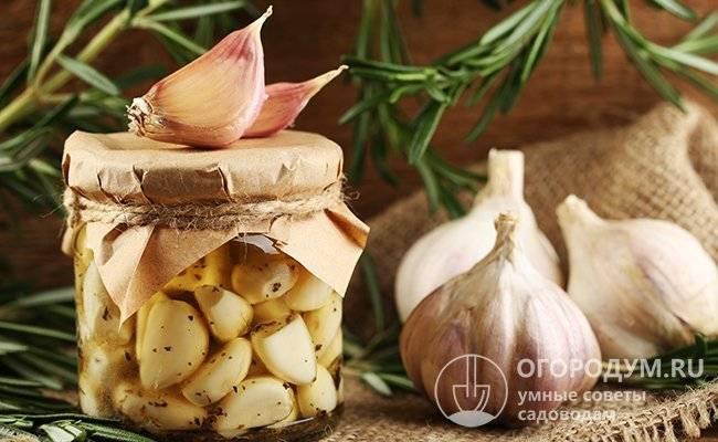10 вкусных рецептов приготовления на зиму свеклы с чесноком