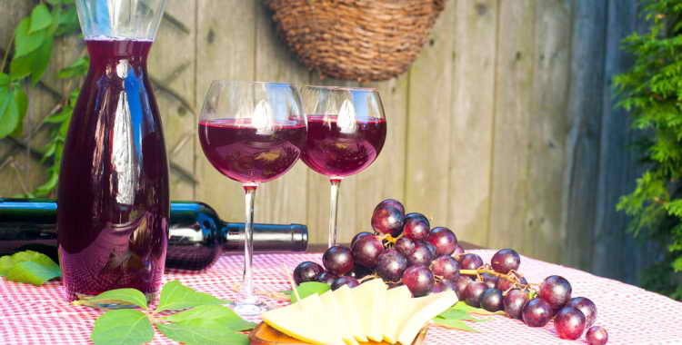 Готовим вино из шиповника в домашних условиях. рецепт вина из шиповника