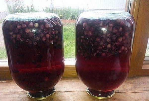 Пошаговый рецепт приготовления компота из черемухи на зиму
