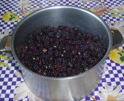 5 лучших рецептов малины с сахаром на зиму без варки