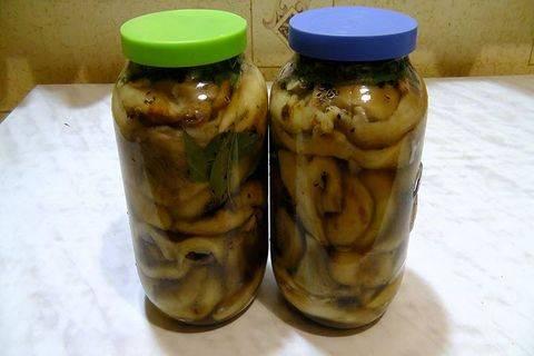 Как солить белые грибы? рецепты соленых белых грибов