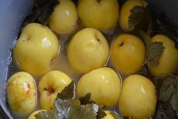 Моченые домашние яблоки. лучшие рецепты на зиму