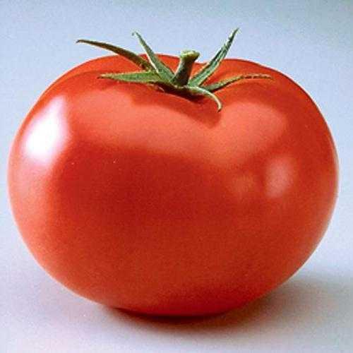 Описание сорта томата Дачные закрома и его характеристика
