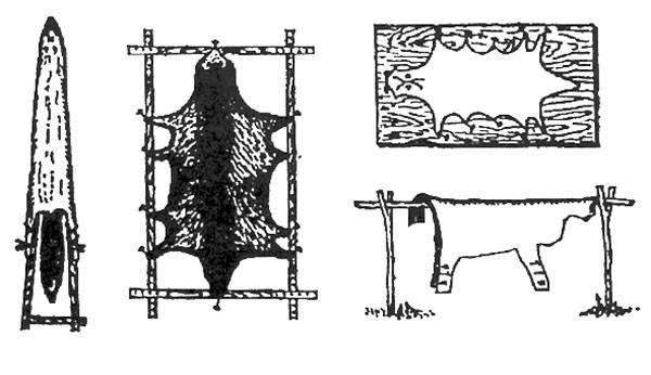 Первичная обработка шкур крс в домашних условиях