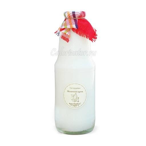 Чем полезно кобылье молоко