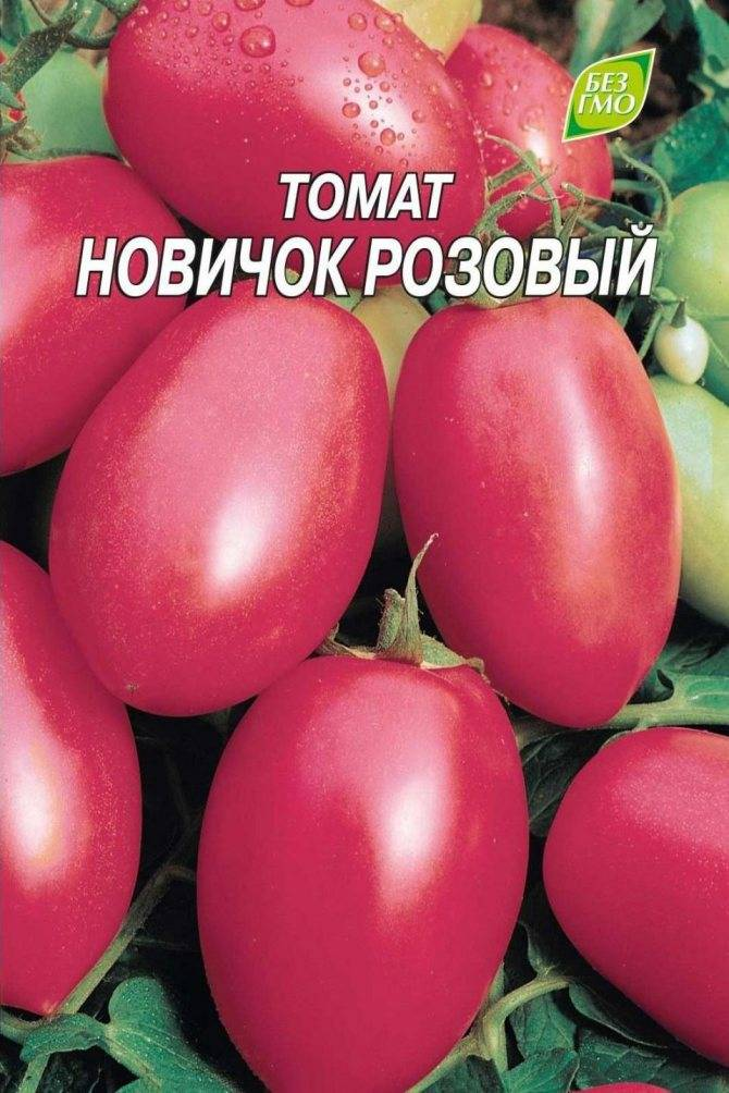 Пришедший с востока томат под названием китайский сувенир f1: детальное описание, агротехника, отзывы