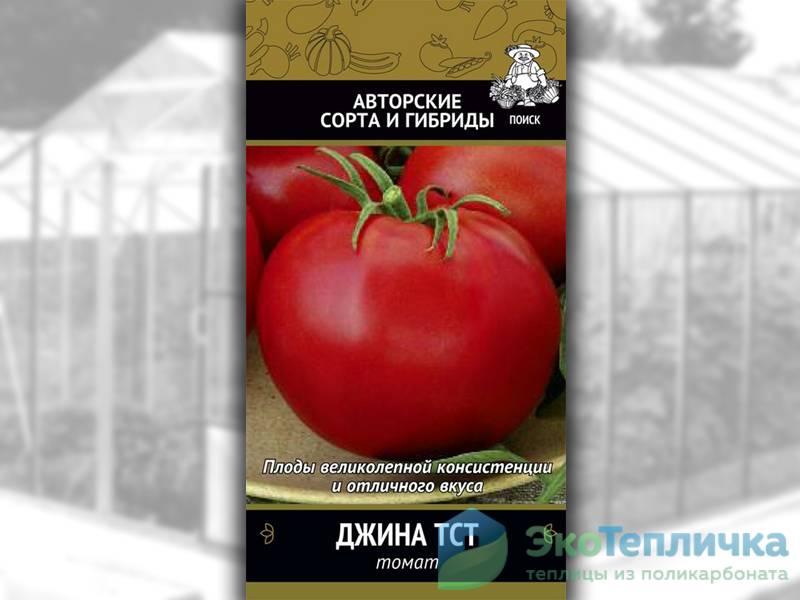 Описание сорта томата Альгамбра, особенности выращивания и ухода