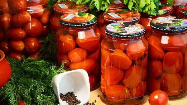 Квашеные зеленые помидоры в банках на зиму