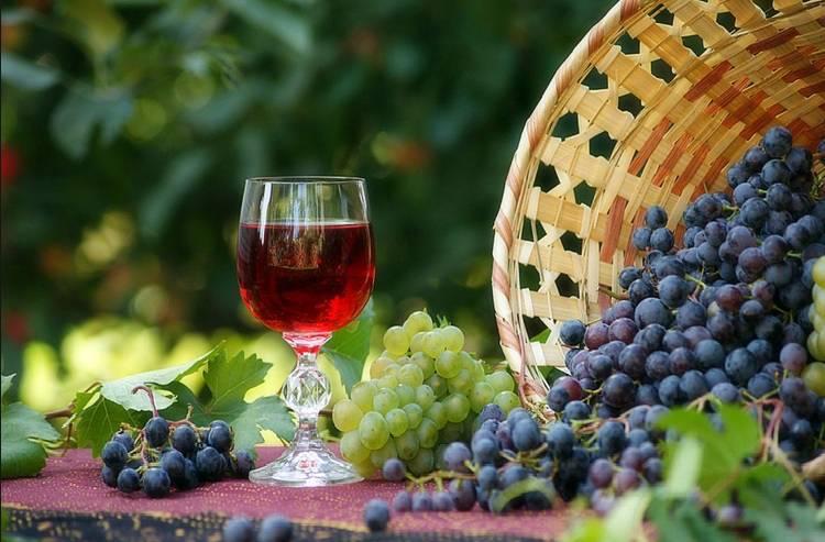 Лучший рецепт приготовления вина из винограда Молдова в домашних условиях