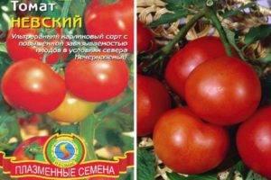 Описание сорта томата Суперстейк и его урожайность и выращивание