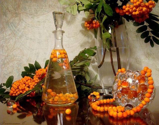 Грушевое вино в домашних условиях — простые рецепты
