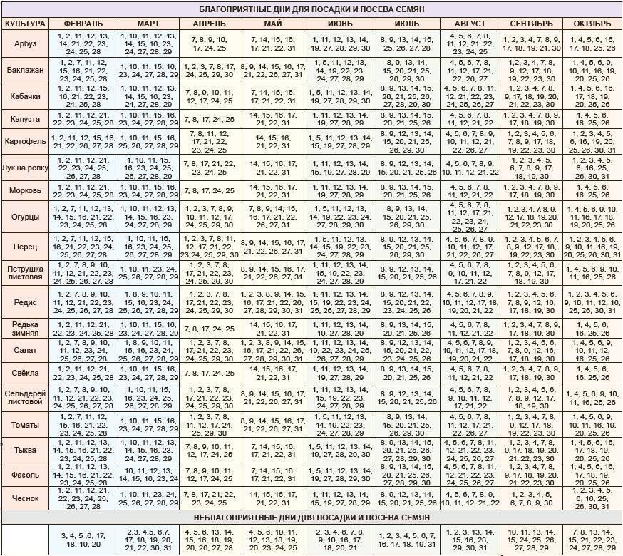 Таблица и календарь посадок на 2020 год для садоводов