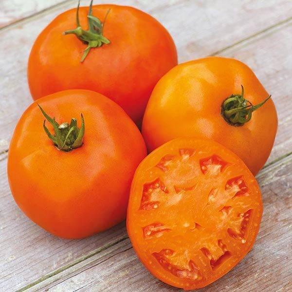 Томат апельсин характеристика и описание сорта