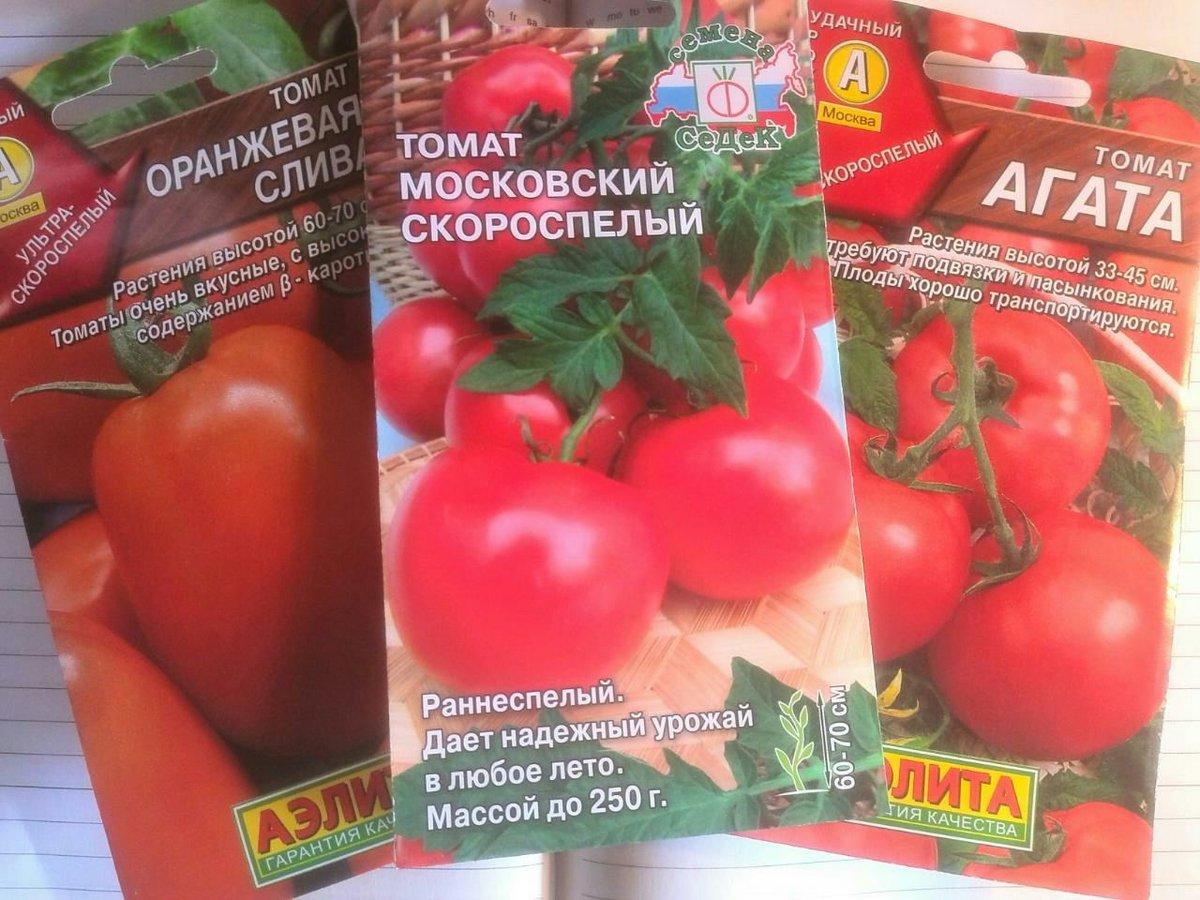 Когда сажать помидоры на рассаду в 2020 году, учитывая сорт, регион и лунный календарь