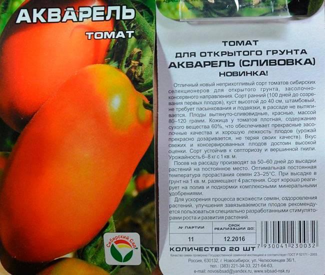 Сорта сливовидных помидоров