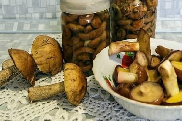 Как мариновать подберезовики и подосиновики: рецепты заготовок на зиму