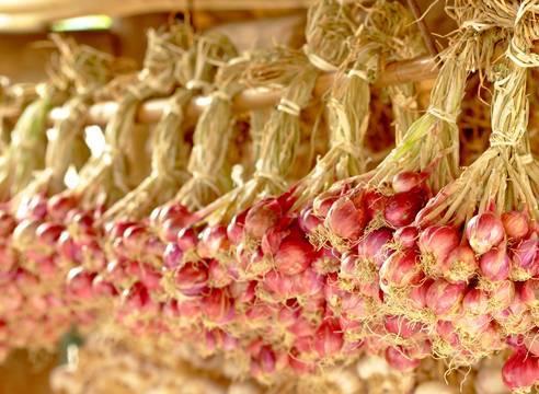 Лучшие техники плетения кос из лука