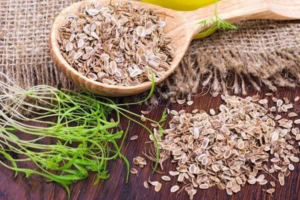 Сроки хранения семян овощей без потери всхожести: рекомендации по хранению
