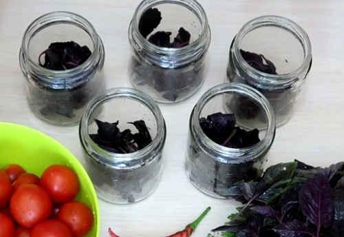 Топ 10 рецептов, как правильно заготовить на зиму базилик в домашних условиях