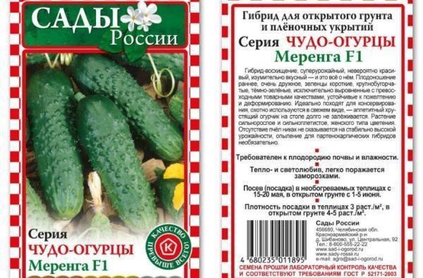Особенности выращивания огурцов сорта «берендей f1» в домашних условиях