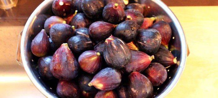 Варенье из инжира: простой рецепт на зиму и советы хозяйкам