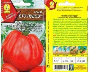Сорт томатов сто пудов