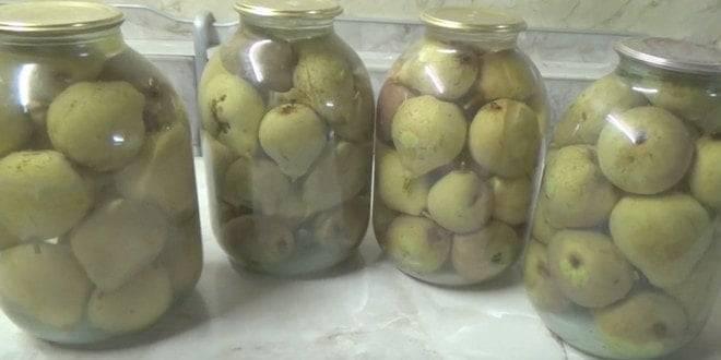 Топ 5 пошаговых рецептов приготовления моченых груш на зиму
