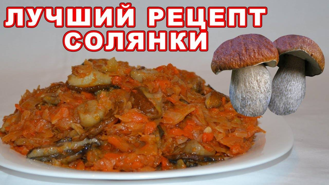 Лучшие рецепты солянки из капусты и грибами на зиму