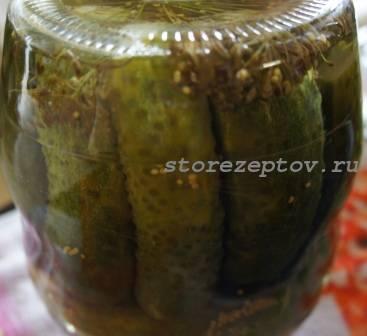 Хрустящие консервированные огурцы на зиму — самые вкусные рецепты на 3 литра