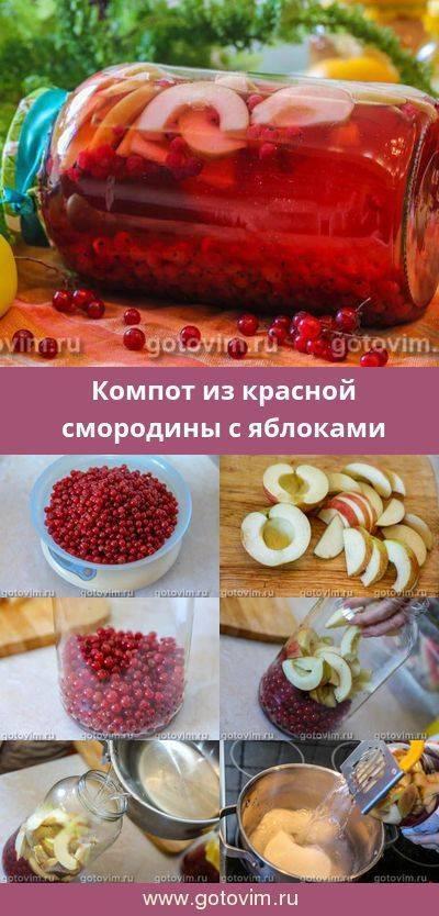 Компот из смородины на зиму – 9 рецептов